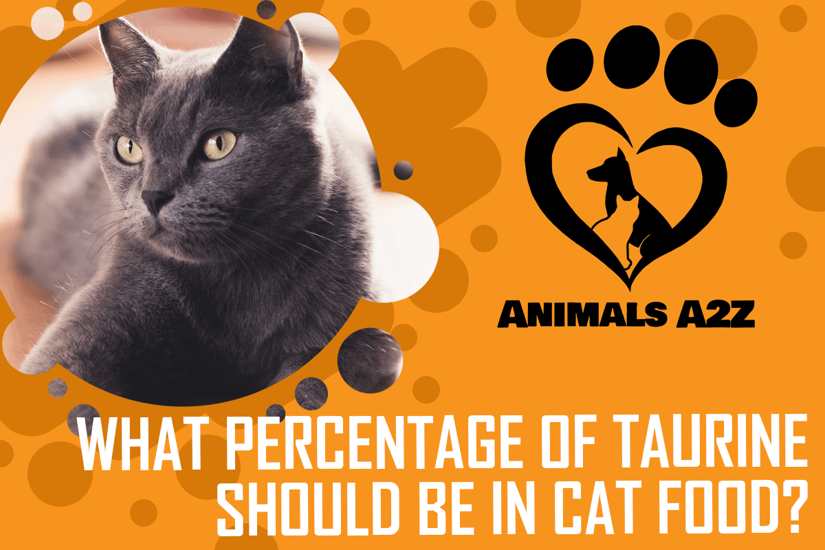 What percentage of taurine should be in cat food